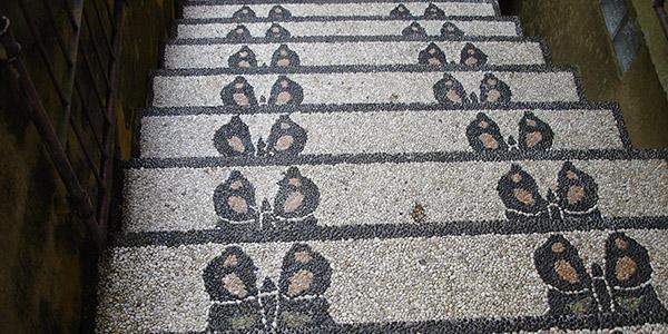 лестница бабочки